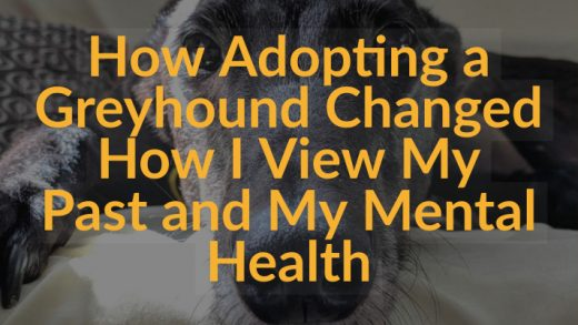 How Adopting a Greyhound Changed How I View My Past and My Mental Health